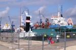 dampfer-welle-sail-2010_21
