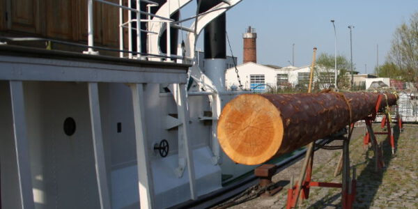 welle-mit-neuen-roh-Mast-3
